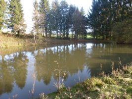 Petit étang et cabanon près de La Châtre