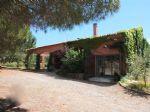 Jolie villa avec oliveraie