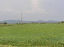 Terrain de loisirs plat de 10 000 m² à 500 m d'un village tous commerces.