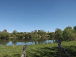 Abzac - Beau lac - Idéal pecheurs avec cabine,arbres fruitiers et bois