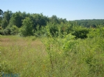 Terrain constructible de 3884 M2 avec belle vue sur forêt, exposition Sud