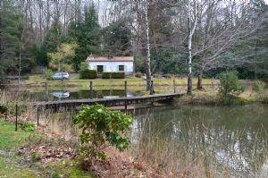 Joli étang avec bungalow de pêche
