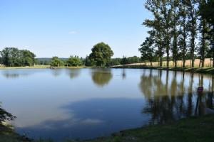 Terrain avec petit étang