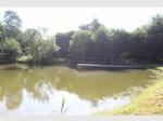 Etang de pêche, au calme de la campagne