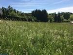 Terrain avec CU environnement campagne hauteurs de Terrasson