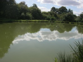 Deux étangs  de pêche 965 m² et 1313 m² sur un terrain de loisirs de 21 116 m².