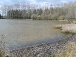 Maison de campagne à rénover avec terrain et étang