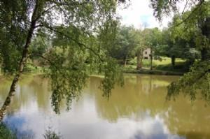 Maison d'habitation de 3 chambres avec un étang, 1ha3 de terrrain