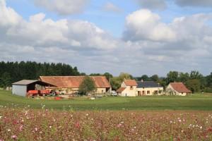 Grande ferme rénovée avec 2 gîtes, située sur 80460m2 de terrain