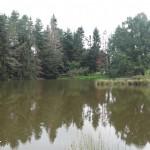 Maison avec étang
