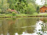 Propri�t� avec Chalet en Bois Habitable Plus un Etang